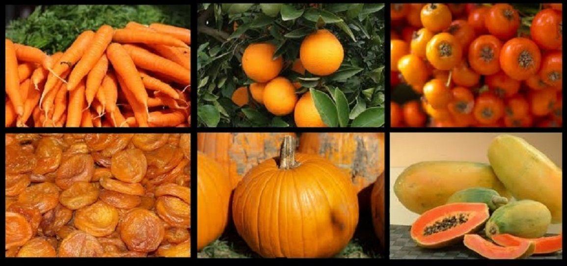 Fantástico Pericarpio De Color Naranja Viñeta - Anatomía de Las ...