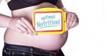 Necesidades Nutricionales en el Embarazo