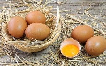 Es verdad que comer más de tres huevos a la semana es malo?